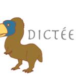 フランス語ディクテ