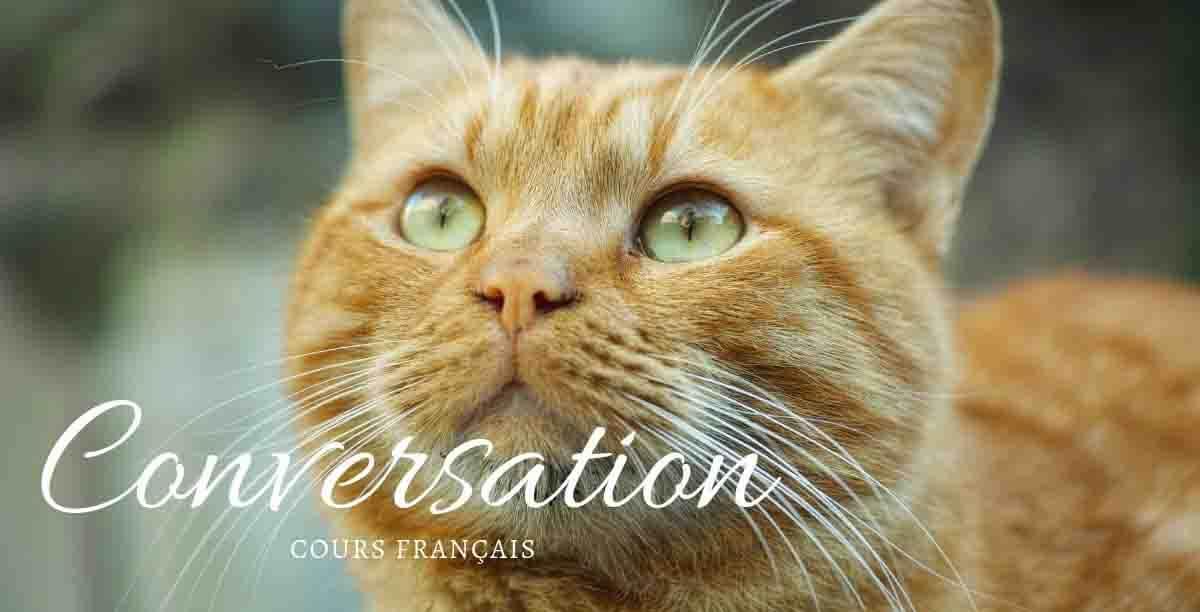 オンラインフランス語レッスン1回目の記録
